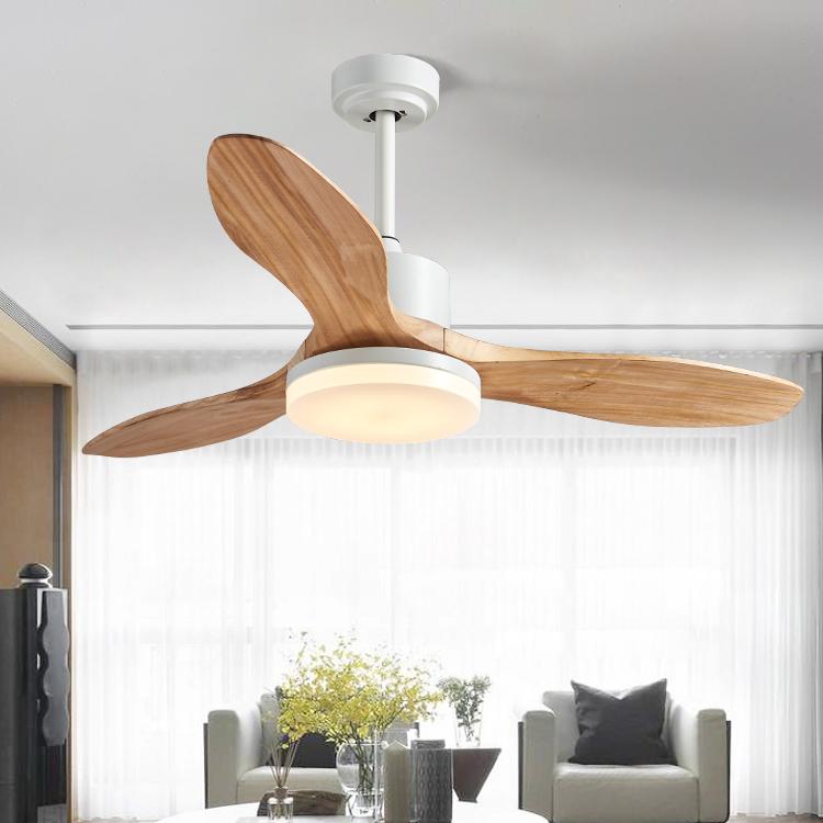 现代简约风扇灯